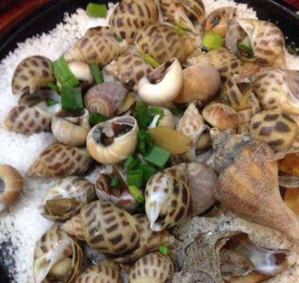珠海焗全螺的做法及介绍---千米饮食网