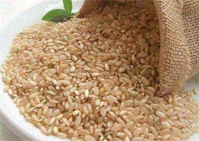 糙米的吃法基金及百科介绍---千米饮食网