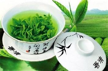 夏季宜多饮绿茶
