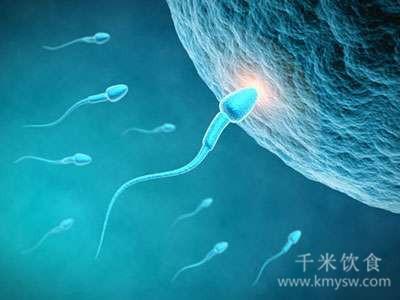 补充维生素能提高精子活力吗?---千米饮食网