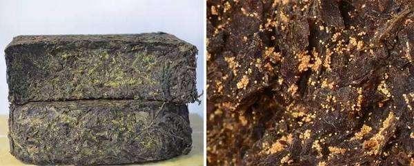 茯砖茶属于什么茶?---千米饮食网