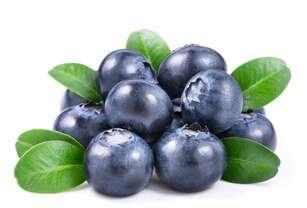 蓝莓的护眼功效 吃蓝莓的好处