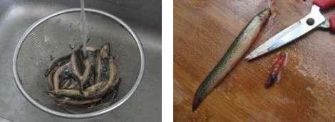 泥鳅怎么杀-图解小泥鳅最简单的宰杀方法---千米饮食网