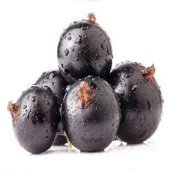 黑色水果的抗衰老能力称霸---千米饮食网