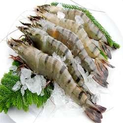 草虾的营养功效以及食用禁宜与怎样挑选保存