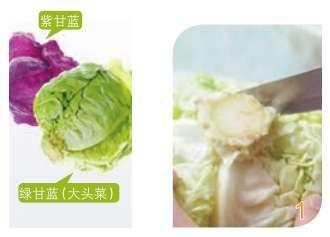 甘蓝(卷心菜)营养功效、相克相宜及预处理
