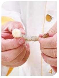 海虾营养功效、相克相宜及预处理