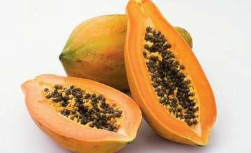 番木瓜的功效与作用集锦及百科介绍---千米饮食网