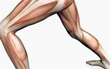 6个高效的增肌食物---千米饮食网(www.kmysw.com)