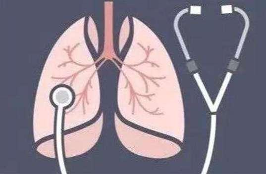 秋季如何养肺 吃好动好能养肺吗?---千米饮食网