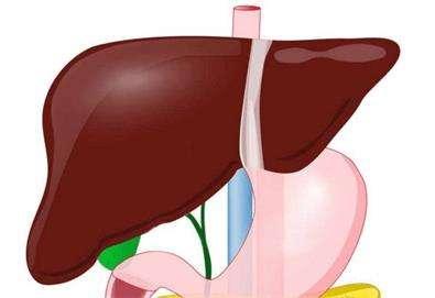治疗脂肪肝六个食疗偏方---千米饮食网