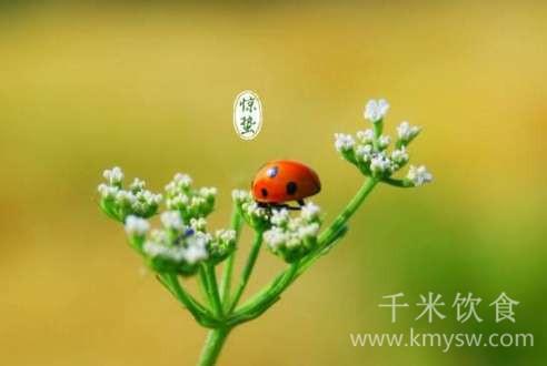 惊蛰的由来与习俗文化介绍---千米饮食网(www.kmysw.com)