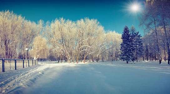 冬季6个保暖方法 这些部位不能冻