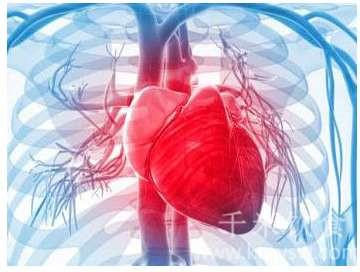 心血管患者春季养生攻略---千米饮食网