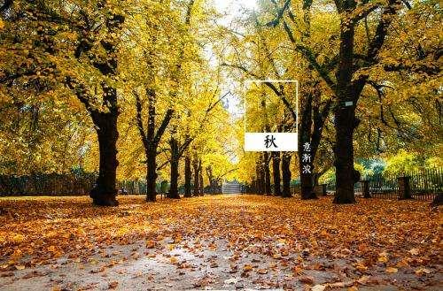 掌握五个小技巧,让你秋季养生不踩坑---千米饮食网(www.kmysw.com)