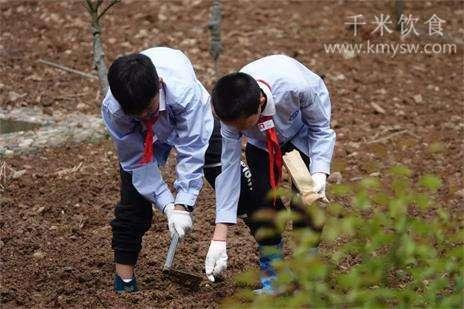 五一劳动节,说说劳动与健康---千米饮食网