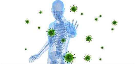 面对新型冠状病毒,教你如何提高免疫力,为了健康,多看看吧---千米饮食网