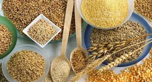 生活中细粮的营养价值---千米饮食网(www.kmysw.com)