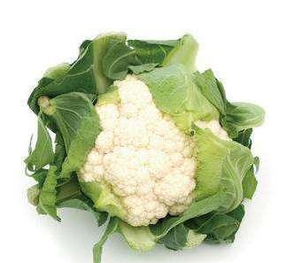 冬季养生十种菜 小白菜通畅利胃---千米饮食网