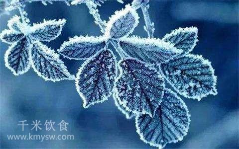 霜降养生要点(饮食篇) ---千米饮食网